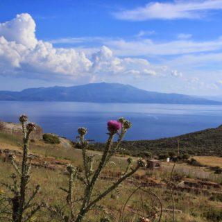 Lesbos the Greek island