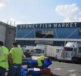 We Visit Sydney Fish Market