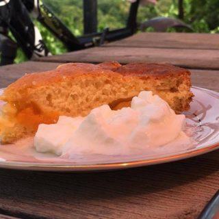 apricot flan and yogurt