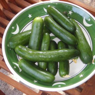 Cooling Cucumbers……and a bit of market life
