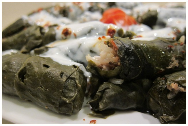 Sarma on a plate with the yogurt sauce